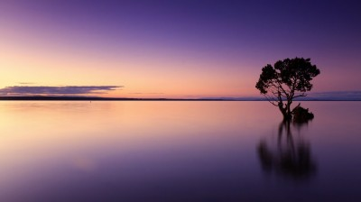 sunset-1373171_1920
